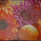 persimmons & gerbras by diLuisa Photography