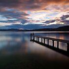 Fishing  by Suellen Cook