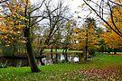vondel park, autumnal amsterdam by gary roberts