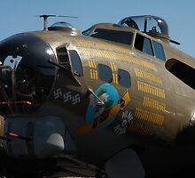 B-17 Flying Fortress  (Nine o Nine) by Kwon Ekstrom