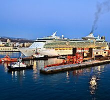MS Independence of the Seas - Royal Caribbean by David Lewins