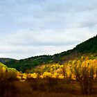 Golden Valley by WarrenMangione