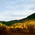 Golden Valley by WarrenMangione
