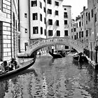 black and white venise by xxnatbxx