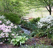 Clemson Gardens by funparklady