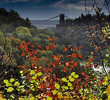 clifton suspension bridge, bristol, england by gary roberts