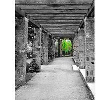 Narnia © Photographic Print