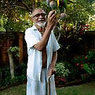 Papa's Mango Tree by Rommel Andrew Henricus