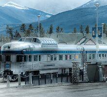 Prince Albert Park - VIA Dome Car by Rick Ruppenthal
