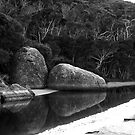 Tidal River mono by Fiona Kersey