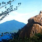 Sphinx Rock - Magnetic Island by Cary McAulay