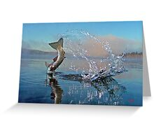 Adirondack Life Photo Greeting Card