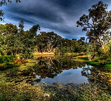 And His Ghost May Be Heard - Billabong , Wonga Wetlands - The HDR Experience by Philip Johnson