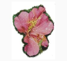 Pretty pink flower rain wet by elmare