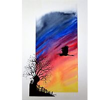 Willow sun rise. Photographic Print