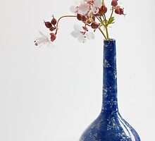Blue vase with geraniums by inkedsandra
