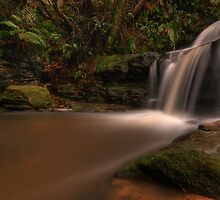 Leura Cascades by Michael Thoms