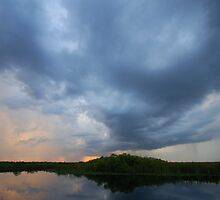 Evening Storm in the Everglades by Dan Bronish