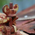 A Rusty nut by Kat36