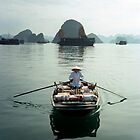 Ha Long Bay, Viet Nam by docophoto