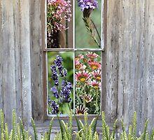 A glimpse into the window of flowers by Myillusions