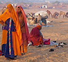 The Village Life-Rajasthan by Mukesh Srivastava