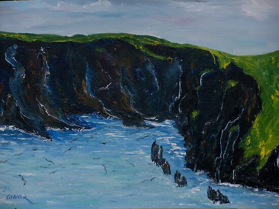 Cape Clare island windward side by Conor Murphy