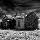 Abandonment by Mindy McGregor