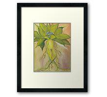Mandrake Framed Print