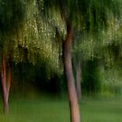 The Park at Dusk by Lynn Wiles