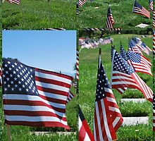 "Memorial Flags by Lenora ""Slinky"" Regan"