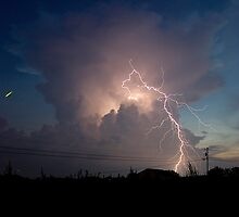 Lightning Bugs 2 by Mark Jarvis
