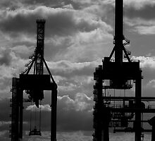 Contain This Crane - Port of Brisbane by Damon Lancaster
