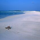 Heavenly Maldives Beach by Peter Doré