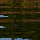 Reflections on the Lake by MaeBelle
