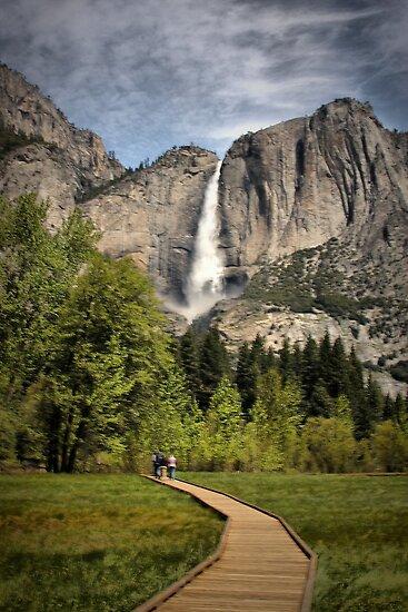 Through Yosemite Meadows by Barbara  Brown