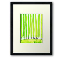 Enthusiastic cypress Framed Print