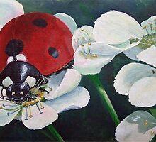 Ladybird-Ladybug by Martin Girolami
