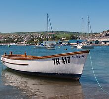 Teignmouth Ferry ~ Devon by Susie Peek