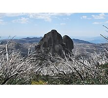 Cathedral Rock Admist Burn't Out Trees Photographic Print