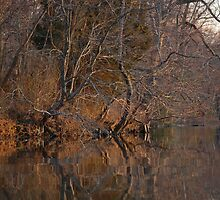 Sunset on the River Bank - West River, MD by Aaron Minnick
