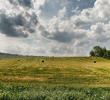 Farmers Field by GPMPhotography
