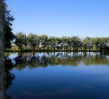 Lake Reflections by AlexKokas