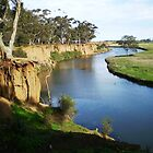Werribee River and the Tree - Vic. by EdsMum
