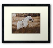 'Pride of the Lough'(bod)-Irish draught Framed Print