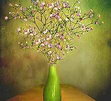 Gypsophilia . by Irene  Burdell