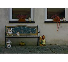typical Ansbach area porch bench Photographic Print