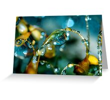 Summer Showers Greeting Card