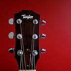 Taylor ...Quality Guitars by Nick Bland