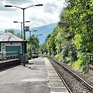 Arrochar and Tarbet Station  by Lilian Marshall